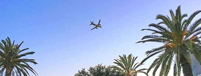 nonstop flights from Fort Lauderdale - plane flying over palm trees