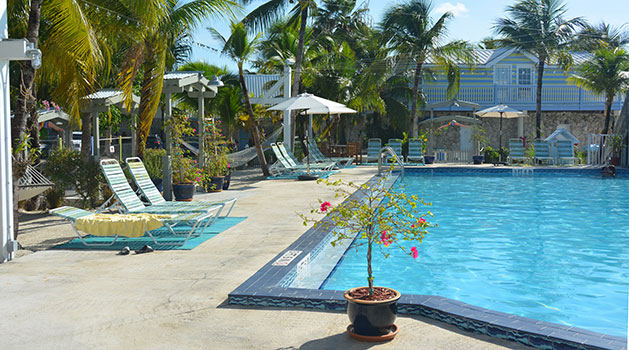 Ibis Bay Beach Resort - Swimming pool